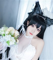 幸子犬婚纱